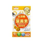 日本味王 金盞花葉黃素晶亮膠囊(30粒)【小三美日】