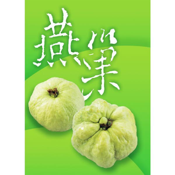 【吉建合作社】燕巢 珍珠芭樂禮盒/5台斤裝(8粒)(含運)