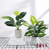 仿真盆栽 假盆栽家居室內裝飾品綠植盆景擺設客廳桌面擺件 BF7973【花貓女王】