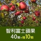 家庭必備【屏聚美食】智利富士蘋果40顆*1箱(加碼送10顆)