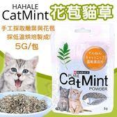 *WANG* HAHALE CATMINT《花苞貓草》5g/包 貓適用