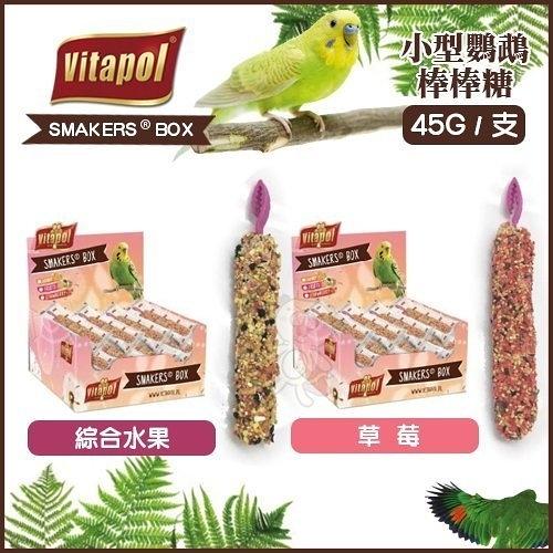 『寵喵樂旗艦店』Vitapol《中型鸚鵡棒棒糖-綜合水果|堅果》45g 中型鸚鵡零食