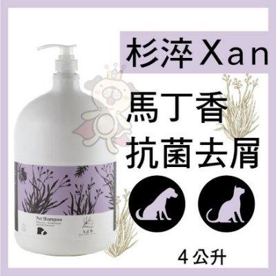 『寵喵樂旗艦店』杉淬Xan》馬丁香抗菌去屑寵物洗毛精4L