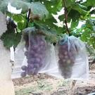水果防鳥防果蠅防蟲網袋黑色火龍果專用套袋套果袋規格齊全 快速出貨