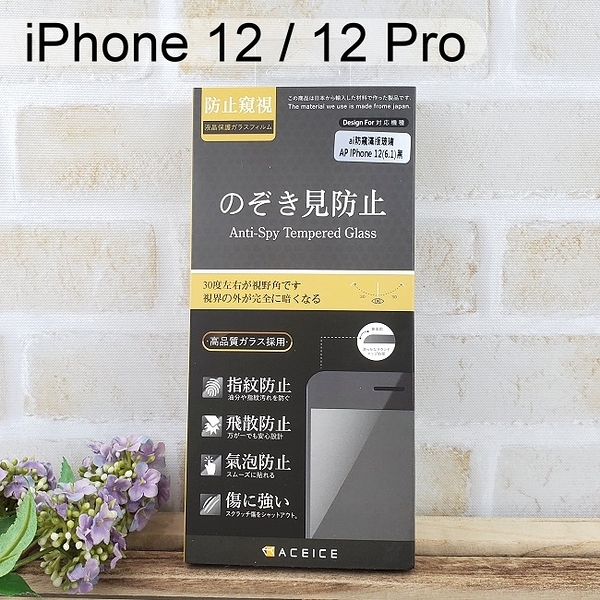【ACEICE】防窺滿版鋼化玻璃保護貼 iPhone 12 / 12 Pro (6.1吋) 黑