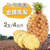 沁甜果園SSN.金鑽鳳梨2支裝/4台斤﹍愛食網