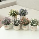 假花 仿真綠植小盆栽盆景家居擺件書桌迷你裝飾假花套裝新品滿天星盆栽【全館免運】