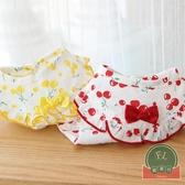 夏季薄款寵物小型犬秋裝可愛櫻桃花邊裙子【福喜行】