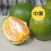 伍家青皮椪柑(中果)10台斤免運組