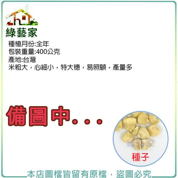 【綠藝家】大包裝G27.本土玉米種子400克