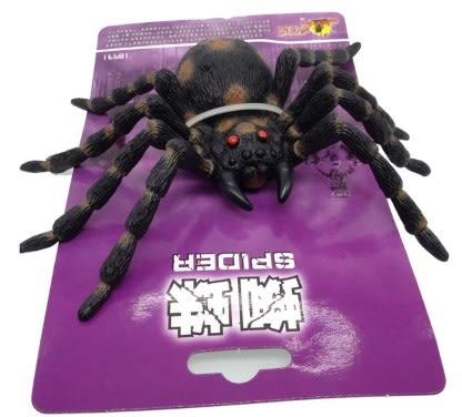 [協貿國際]仿真蜘蛛動物模型兒童玩具超大號實心蜘蛛嚇人整蠱恐怖玩具1入