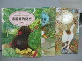 【書寶二手書T8/少年童書_PAU】布麗姬的秘密_莫莉的晚餐_赫絲芭的羊毛等_共4本合售