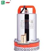 綠一 直流潛水泵12V24V48V電動電瓶車抽水泵家用高揚程抽水機農用QM 向日葵