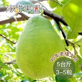 沁甜果園SSN.40年老欉文旦(約3-5粒/5台斤)﹍愛食網