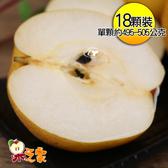 果之家 台中東勢一級鮮嫩豐水梨18顆入(共約15台斤)