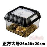 爬蟲飼養箱蜘蛛飼養盒烏龜缸