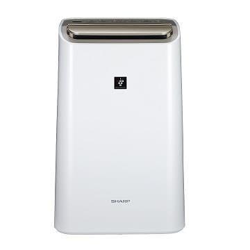 *~新家電錧~*【SHARP夏普 DW-H12FT-W】12L空氣清淨除濕機 【實體店面】