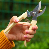 園藝剪 修剪樹枝剪刀園林工具花剪園藝剪刀修枝剪子花枝剪刀粗枝剪 雙11購物節