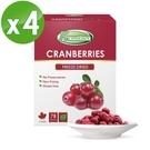 Frenature富紐翠-蔓越莓翠鮮果凍乾 20g (冷凍真空乾燥水果乾) 4盒組