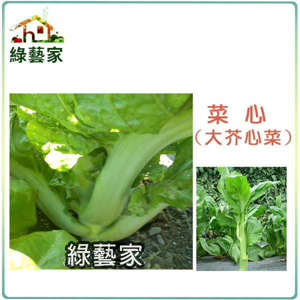 【綠藝家】大包裝A27.菜心種子30克(大心芥菜)