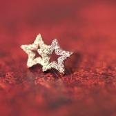 耳環 925純銀鑲鑽-五角星星情人節生日禮物女飾品73gk20【時尚巴黎】