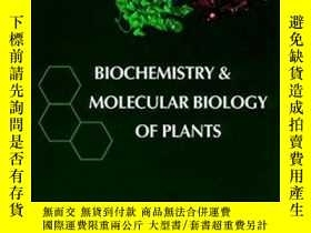 二手書博民逛書店Biochemistry罕見& Molecular Biology Of PlantsY364682 Buch