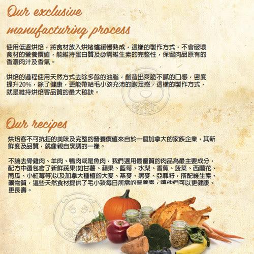 【zoo寵物商城】(免運)(送刮刮卡*1張)烘焙客Oven-Baked》無穀低敏全犬深海魚配方犬糧小顆粒12.5磅