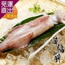 幸福小胖 新鮮現撈活凍透抽 2包4~6尾/1公斤/包【免運直出】