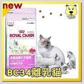 【ZOO寵物樂園】法國皇家Baby BC34《離乳貓》飼料 - 4kg