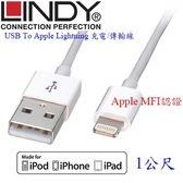 德國林帝LINDY 31350 Apple Lightning 8pin USB傳輸線 1m (Apple官方認證)