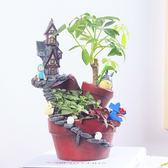 多肉植物花盆創意微景觀組合空中花園花盆ins花盆韓國家居花器diy-奇幻樂園