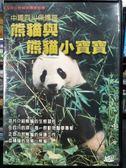 影音專賣店-P08-259-正版VCD-電影【熊貓與熊貓小寶寶】-