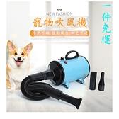 110V寵物美容吹水機/吹風機/吹乾機/ 大中小型犬.貓狗寵物大功率靜音寵物專用烘干吹毛神器