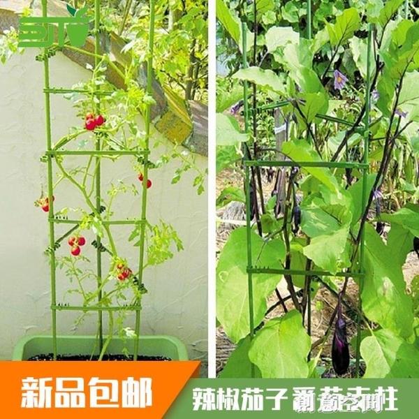 西紅柿支撐架爬藤植物架子種菜黃瓜架種絲瓜豆角攀爬架子爬藤支架 NMS創意新品