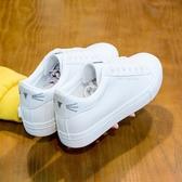增高鞋內增高厚底秋款小白鞋女鞋子夏款新款百搭白鞋女秋季秋鞋板鞋【快速出貨】