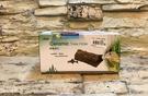 【西高地水族坊】造景擺飾-ISTA 陶瓷樹孔 異形 鼠魚