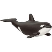 Schleich 史萊奇動物模型 小虎鯨_ SH14836