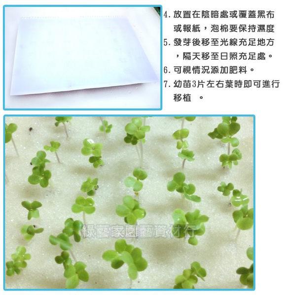 【綠藝家】水耕育苗海綿.泡綿(1片內切96塊)300片