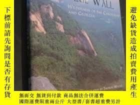 二手書博民逛書店The罕見Blue Wall : Wilderness Of T