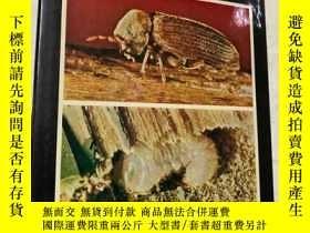 二手書博民逛書店The罕見Woodworm Problem「木蛀蟲問題」Y187641 Norman.E.Hickin Hut