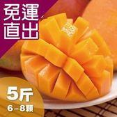 沁甜果園SSN. 台南愛文芒果(6-8粒裝/5台斤)E00900066【免運直出】