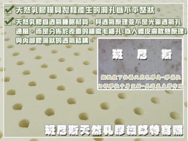 【班尼斯國際名床】~【42x42x5cm】天然乳膠釋壓坐墊~Malaysia製造(辦公椅/午睡墊)