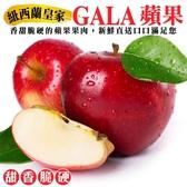 【果之蔬-全省免運】紐西蘭皇家級GALA蘋果x60顆(每顆120g±10%)