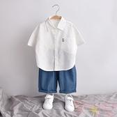 純棉襯衣兒童男童襯衫短袖寶寶透氣上衣百搭【聚可愛】