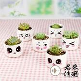 【6個裝】卡通標籤多肉花盆植物陶瓷卡通花盆可愛室內【君來佳選】