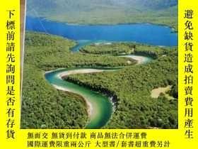 二手書博民逛書店DK罕見Eyewitness Travel Guide: New ZealandY254800 DK Tra