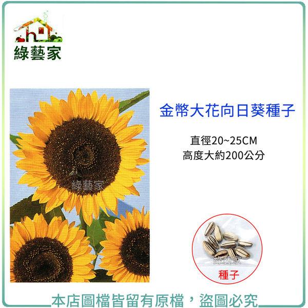 【綠藝家】H43.金幣大花向日葵種子10顆(直徑20~25CM,高度大約200公分)