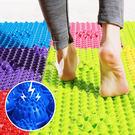 腳底指壓板 按摩板 健康步道 腳底按摩墊...