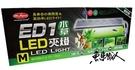MR.AQUA 水族先生 【ED1 LED 水草側夾燈 M/30-35cm缸用 】 D-MR-813 魚事職人