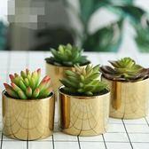 仿真植物裝飾北歐綠植室內盆栽客廳擺件假花卉多肉家居擺設【奈良優品】